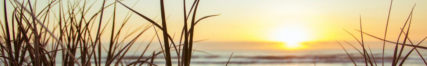 Viergang zon zee strand